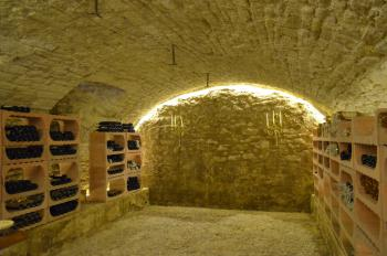 Try a wine in our wine cellar