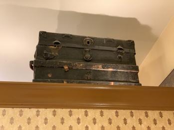 Garden Suite Suitcase