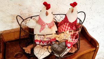 Nos poulettes de Liézey