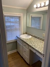 Master Vanity (NO shower or toilet)