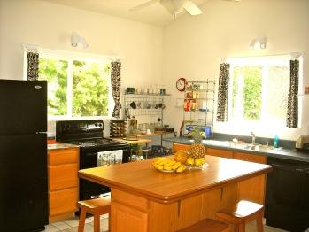 Orchid Suite Kitchen