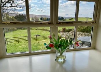 Bluebell Cottage garden view