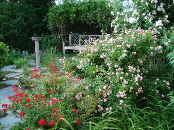 Newport House historic herb garden