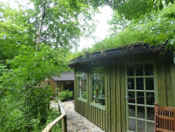 Ty Cefn Tregib B&B - THE LOOKOUT nestled into the woods