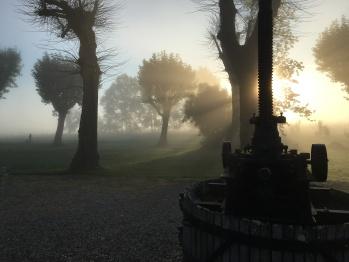 Chateau Masburel - Early morning