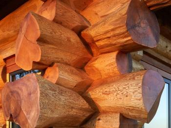 Western Red Cedar Logs