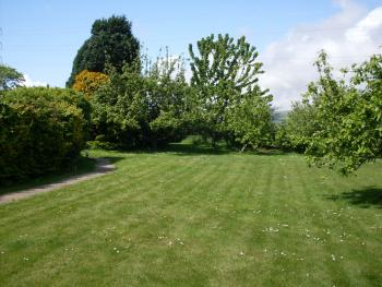 Tyn Cellar Garden