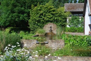 Le parc - Les bassins