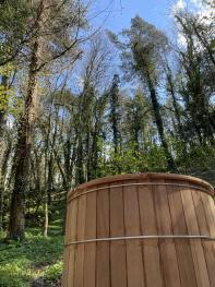 Bain nordique privatif vue sur la forêt