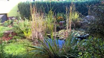 privater Gartenteich
