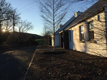 Evening sun at Tavnaghoney Cottages