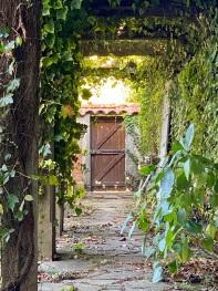 Au jardin Le Rez de Jardin Albi