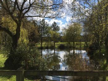 Woodman's Farm - One of the two ponds