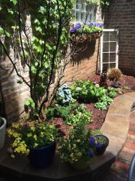 Garden- Day