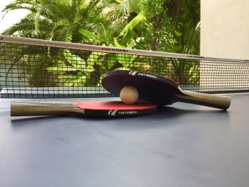 Ping pong villa ioanes
