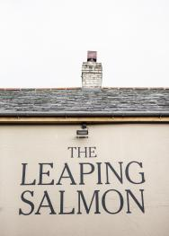 The Leaping Salmon - The Leaping Salmon