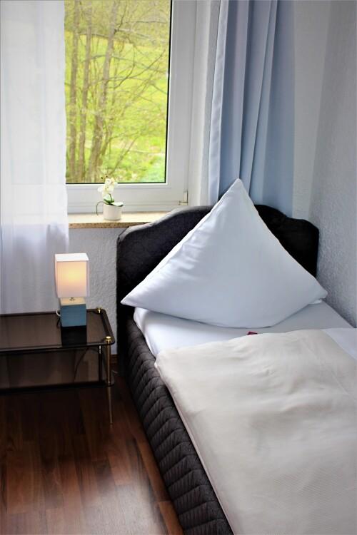 Einzelzimmer-Standard-Ensuite-Berghof - Standardpreis