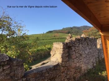 Vue sur les Vignoble