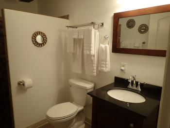 Suite 205 Bathroom