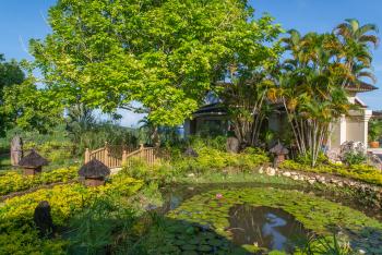 Garden Pond Area