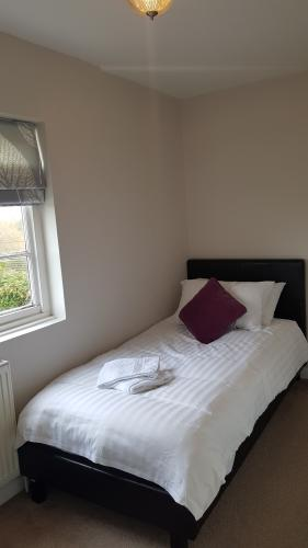 Single room-Standard-Ensuite with Shower-Park View-Single Room - Base Rate
