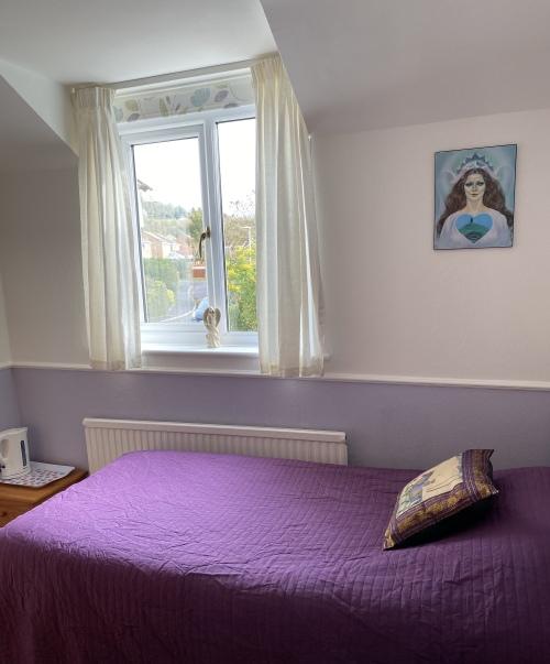 Single room-Classic-Shared Bathroom-Mountain View-Merlin Room