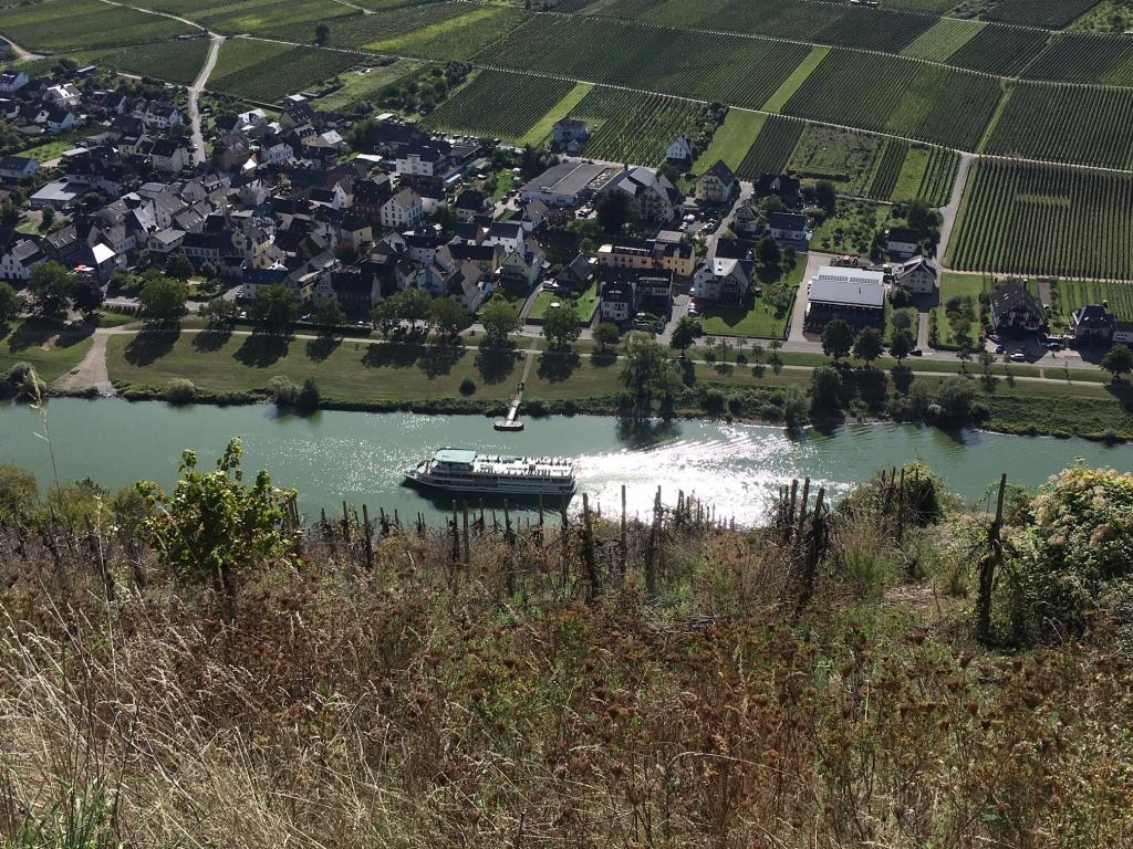 Blick vom Valwigerberg auf das MOSELTEL Ernst/Cochem
