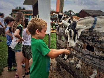 Feeding the goats a farm fun activity 3 miles away!  Climbing equipment for the kids too!