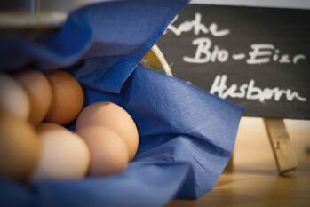 Bio-Eier vom Bauern im benachbarten Hesborn