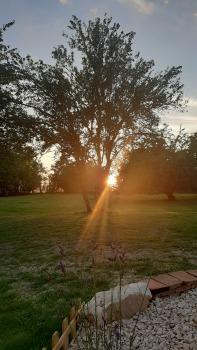 Quand le soleil joue
