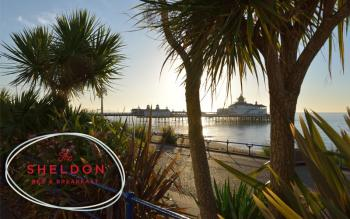 Our amazing pier