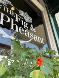 The Fig & The Pheasant