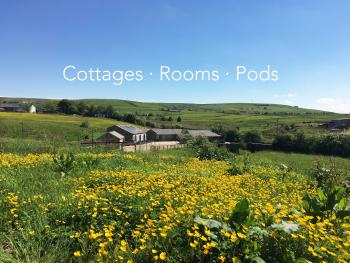 Rossendale Holiday Cottages -