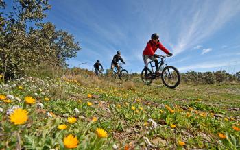Cyclisme dans les montagnes ou vallées des Pyrénées