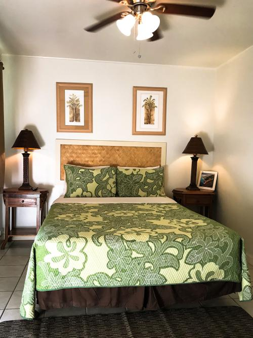 Deluxe Room with One Queen Bed and AC