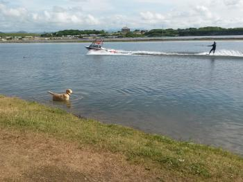 Port Haverigg Watersports and Frankie our dog!