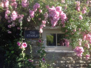 The Stable - The Stable
