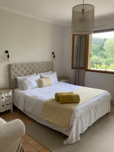 Double or Twin-Panoramic-Vineyard view-Ensuite with Shower - Base Rate