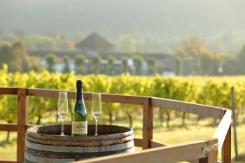 Denbies Vineyard Hotel -
