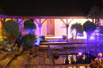 Our Water Garden at Night (shared area)