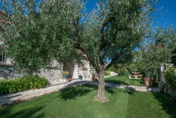 Bastide les 3 Portes L'olivier
