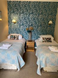 Twin room-Deluxe-Ensuite with Shower