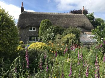 Corner House - Corner House rose garden