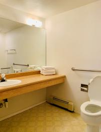 Handicap Accessible Guest Bathroom