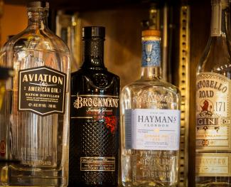 We have a large selection of excellent Gins