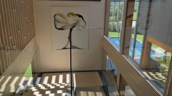 Villa Lascaux transparence dans l'escalier