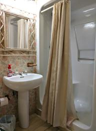 Garden Room #2 Bathroom Shower Stall/Sink