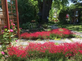 Jardin du Gîte Amour et Amitié