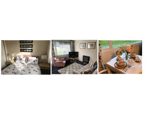 Cabin-Shared Bathroom-Garden View-Villa 7 - Base Rate - 1 Night Price