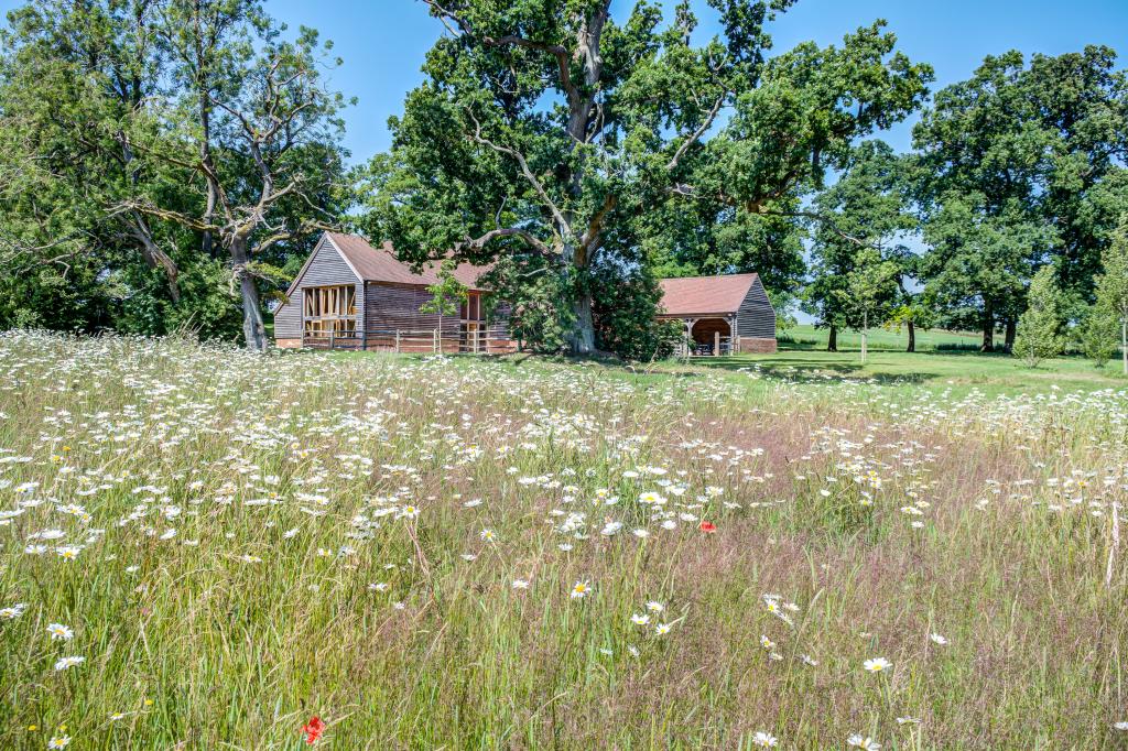 Barn across the wildflower meadow